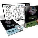 Romeo and Juliet IQ Matrix Workbook